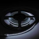 Ruban LED 5 Mètres - 240LED/M - 2835 Blanc Froid - IP20