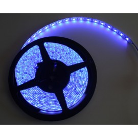 Ruban LED 5 Mètres - 60LED/M - 3528 Bleu - IP65