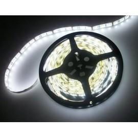 Ruban LED 15 Mètres - 60LED/M - 3528 Blanc Froid - IP65