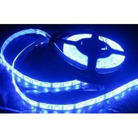 Ruban LED Professionnel 5 Mètres - 60LED/M - 3528 Bleu - IP65