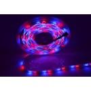 Ruban LED Commercial- 5 Mètres - 60LED/M - 3528 RGB - IP65