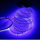 Ruban LED 5 Mètres - 120 LED/m - 3528 - Ultraviolet