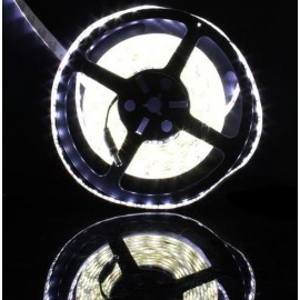 Ruban LED Professionnel 5 Mètres - 60LED/M - 3528 Blanc Pur - IP65