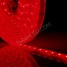 Ruban LED Submersible Professionnel RGB - Kit Complet - IP68 - 60LED/M - 5050